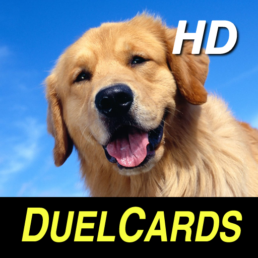 Dog Breeds HD